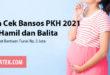 Cara Cek Bansos PKH 2021 Ibu Hamil